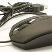 Мышка 3D фото