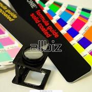 Печать каталогов, буклетов, листовок. фото
