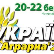 "Выставка-ярмарка ""Украина аграрная-2014"" фото"