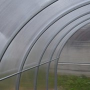 Теплица Гарант-Триумф дуги 40х20 10 метров. фото