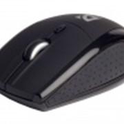 Мышь Defender Rider 205 Nano (black) фото