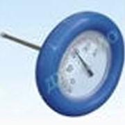 Термометр плавающий фото