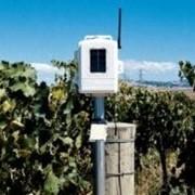 Davis 6345 OV Беспроводная почвенная метеостанция (Davis Instruments). фото