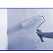 """Предприятия прозводящие стройматериалы. Предприятие производит: -акриловые грунты ТМ """"NovoMix"""": ёмкости 1-2-5-10литров; -клей ПВА: емкости 1-2,5-5кг. фото"""