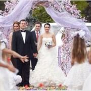 Свадьба в Молдове фото