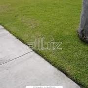Наполнитель резиновый для искусственной травы фото