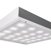 Светильник накладной со степенью защиты ДПО 12 Рубин IP54 LED фото