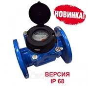 Счетчик холодной воды ВСХН-50 IP 68 фото