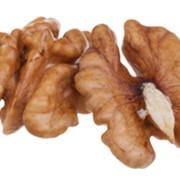 Грецкие орехи Ermak фото