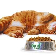Корм для котов фото