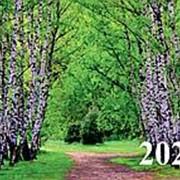 """Календарь 2020 квартальный трёхблочный Август """"Природа 2"""", КВК-6 фото"""