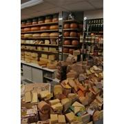 Сыр голландский фото