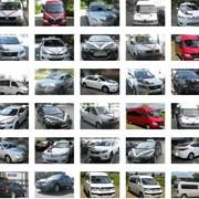 Прокат машин и микроавтобусов на свадьбу фото