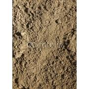 Анализ почвы фото