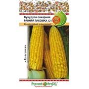 Кукуруза сахарная Ранняя лакомка 121 (7г) фото