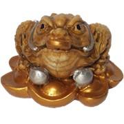 Лягушка на золоте фото