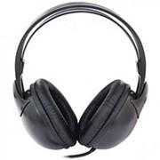 Наушники Ritmix, RH-529, полноразмерные, кабель 2 метра, чёрные фото