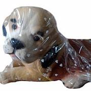 Копилка Собака лежит средняя фото