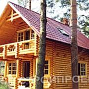 Дом-баня с камином «Сосновый бор» фото