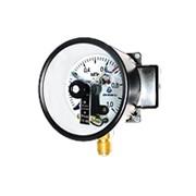 Манометр ДМ СГ 05 160-01М 0...2,5мПа(160мм) фото
