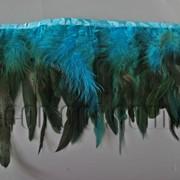 Перо-юбка морская с черными хвостиками 15-20см/48-50см 570823 фото
