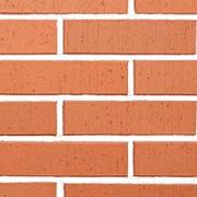 Облицовочный пустотелый кирпич Lode SKARBAIS JANKA красный шероховатый 250x120x65 фото