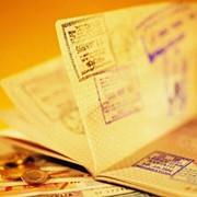 Виза шенген, помощь в оформлении фото