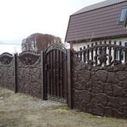 Еврозабор с воротами под ключ в Запорожье фото