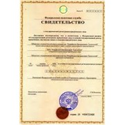 Государственная регистрация ООО фото