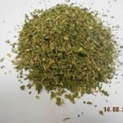 Петрушка зелень молотая фото