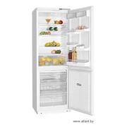 Холодильники двухкамерные ХМ 5010 фото