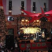 Новогоднее оформление ресторанов, гостиниц, кафе фото