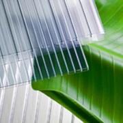 Сотовый поликарбонат — это пустотелый полимерный лист с внутренней структурой, представляющей собой многослойную конструкцию, заполненную ребрами жесткости. фото