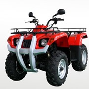 Квадроцикл JINLING ATV200-UTILITA фото