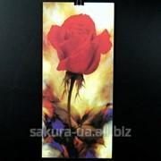 Картина Magnifique / 40х18 см / Розы 1 e14202 фото