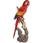 Скульптура Попугай 68 см. арт.MN-19 фото