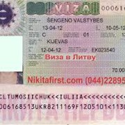 Виза в Литву фото