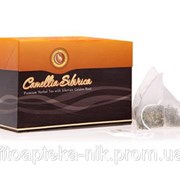 Напиток чайный Camellia sibirica (Камелия сибирика) с золотым корнем в пирамидках фото