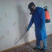 Уничтожение комаров фото