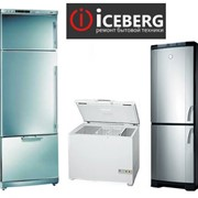 Услуги по ремонту холодильников всех марок фото
