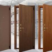 Двери Гардиан фото