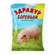 ЗДРАВУР Боренька 250 гр 12 мес (40) ВХ фото