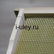 Рамка с вощиной для улья Рута (высота 230 мм) фото