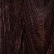 Декоративный бумажно-слоистый пластик HPL (Древесные декоры) 9730 орех эллето темный фото