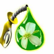 Призводство биогаза из биомассы фото
