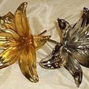 Лилия в золоте фото