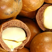 Масло макадамского ореха фото
