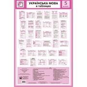 Таблиці. Українська мова. (59-83 см.) 34 шт. фото