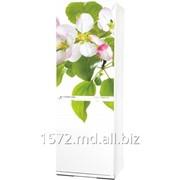 Фасад для холодильников Snaige Артикул: 019 фото