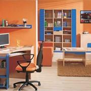 Мебель для детской комнаты Fliper. Купить мебель Киев фото